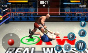 Real Wrestling 3d pc