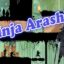 Ninja Arashi for Windows 10/ 8/ 7 or Mac